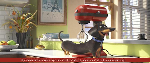 PETS – VITA DA ANIMALI (The Secret Life of Pets) di Yarrow Cheney e Chris Renaud, 2016