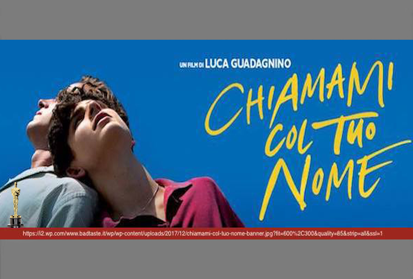 CHIAMAMI COL TUO NOME di Luca Guadagnino, 2018