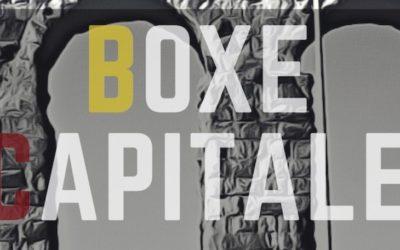 BOXE CAPITALE di Roberto Palma, 2018
