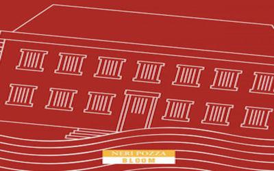 LA SCUOLA di Herman Koch- Editore Neri Pozza Bloom, 2019